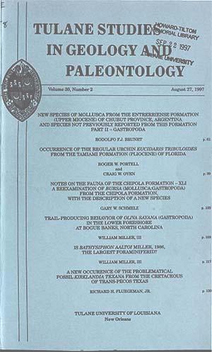View Vol. 30 No. 2 (1997)